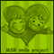 MSR smile project